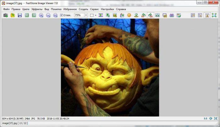 Скачать FastStone Image Viewer с официального сайта