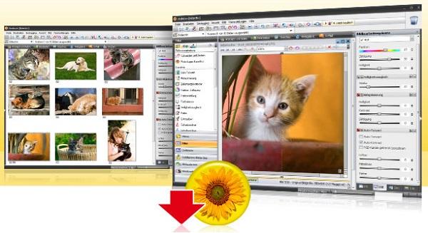 Studioline Photo Basic скачать бесплатно