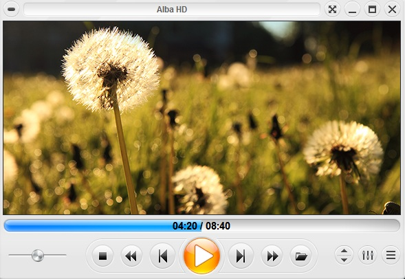 Zoom Player Free