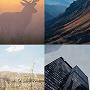 Новые фоны в Яндексе для гаджетов