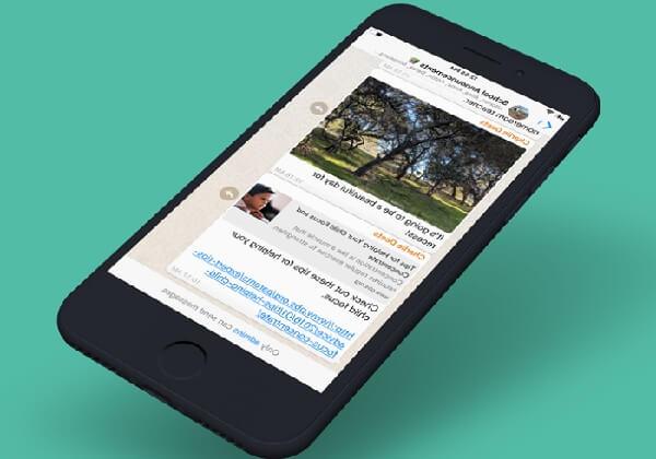 В WhatsApp появятся новостные каналы