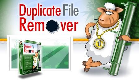 Логотип к Duplicate File Remover
